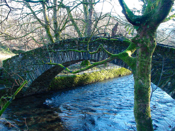 Bridge near Ambleside